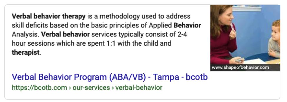 VBA Definition Screenshot